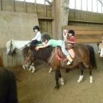 poney4