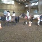 poney5
